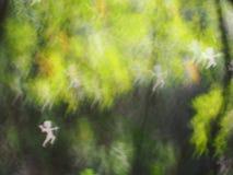 Предпосылка bokeh абстрактных светов роскошная Стоковое Фото