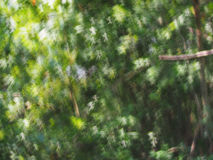 Предпосылка bokeh абстрактных светов роскошная Стоковые Фотографии RF