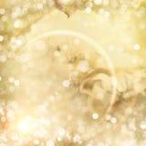 Предпосылка Bokeh зимы золотая Стоковое Изображение RF