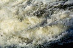 предпосылка 3d представляет брызгает воду белую Стоковое Изображение