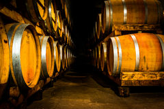 предпосылка 3d barrels модельное белое вино Стоковая Фотография