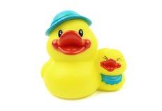 предпосылка ducks белизна Стоковые Изображения