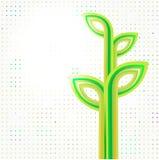 Предпосылка Eco зеленая абстрактная Стоковые Фотографии RF