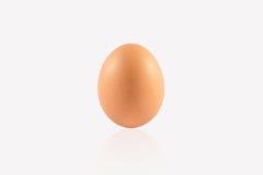 предпосылка eggs белизна Стоковое фото RF