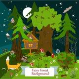 Предпосылка fairy леса ночи Стоковые Изображения RF