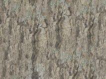 Предпосылка Grunge серая абстрактная Стоковые Изображения