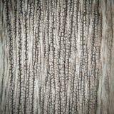 Предпосылка Grunge старая деревянная Стоковые Фотографии RF