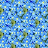 Предпосылка primula цветения Флористический первоцвет весны цветет безшовная текстура флористическая картина безшовная Крупный пл Стоковые Изображения RF
