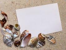Предпосылка seashells на предпосылке песка пляжа с бумагой Стоковые Фото