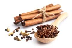 предпосылка spices белизна Стоковые Фотографии RF