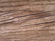 Предпосылка Woodgrain Стоковое Фото