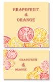 Предпосылки вектора грейпфрута и апельсина Стоковые Изображения RF