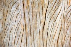 Предпосылки деревянной коробки/текстура s Стоковая Фотография RF