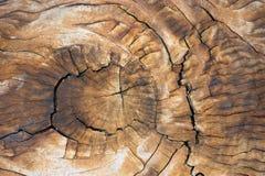 Предпосылки деревянной коробки/текстура s Стоковые Фото