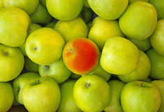 Предпосылки красного яблока в центре зеленых яблок Стоковые Фото