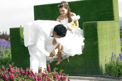 Пре-свадьба стоковые фото