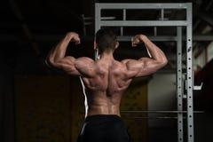 Представление бицепса мышц мышечного человека изгибая заднее двойное Стоковые Фото