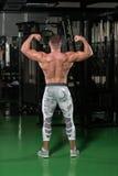 Представление бицепса мышц мышечного человека изгибая заднее двойное Стоковое Фото