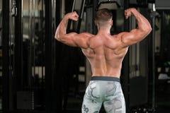 Представление бицепса мышц мышечного человека изгибая заднее двойное Стоковая Фотография
