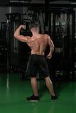 Представление бицепса мышц мышечного человека изгибая заднее двойное Стоковая Фотография RF