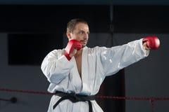 Представление бойца Тхэквондо Стоковая Фотография RF