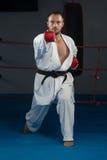 Представление бойца Тхэквондо Стоковое Изображение
