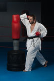 Представление бойца Тхэквондо Стоковое Фото