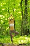 Представление дерева йоги женщиной на зеленой траве в парке вокруг сосны t Стоковое Изображение