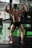 Представление задних мышц мышечного человека изгибая Стоковые Фото