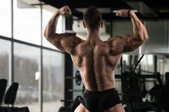 Представление задних мышц мышечного человека изгибая Стоковое Фото