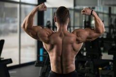 Представление задних мышц мышечного человека изгибая Стоковая Фотография RF