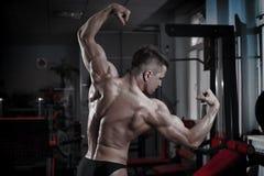 представлять гимнастики культуриста Совершенная мышечная задняя часть мужчины Стоковые Изображения RF