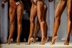 Представлять женщин ног группы худеньких Стоковое Изображение RF