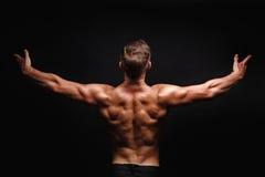 представлять культуриста Muscles плечи и задняя часть стоковые фотографии rf