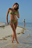 Представлять 2 моделей бикини сексуальный на тропическом пляже Стоковая Фотография RF