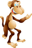 Представлять обезьяны Стоковая Фотография RF