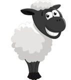 Представлять овец шаржа Стоковая Фотография
