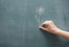 Представлять цветок Стоковая Фотография