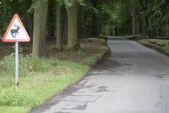 Предупреждение, олень в дороге Стоковые Фото
