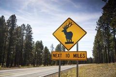 Предупредительный знак дороги оленей, США Стоковые Фотографии RF