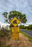 Предупредительный знак скрещивания коалы Стоковые Фото