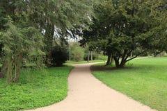 Предыдущая весна в парке Стоковые Изображения