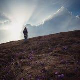 предыдущая весна горы ландшафта Стоковая Фотография