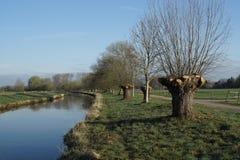 Предыдущая весна на более низкой зоне Рейна Стоковое Изображение RF