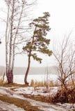 предыдущая весна стоковое изображение rf