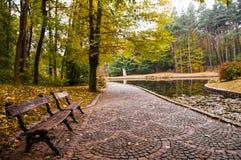 Предыдущая осень в парке стоковые изображения