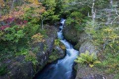 Предыдущая осень на Ryuzu понижается, Nikko, префектура Tochigi, Япония Стоковые Изображения