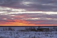 предыдущее лето берега утра озера Стоковая Фотография RF