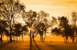 предыдущее светлое солнце утра Стоковое фото RF
