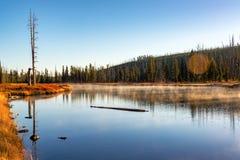 предыдущее утро ландшафта Стоковые Фото
